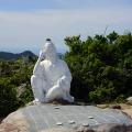 De Hoï An à Hué : le col des nuages sans un cumulus…