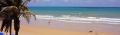 Nordeste Brésil : 1000 km de plages