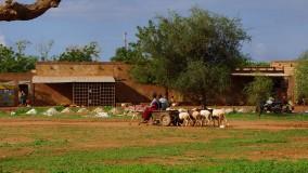 Burkina Faso / Côte d'Ivoire